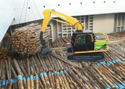 Logs 8, Dunedin